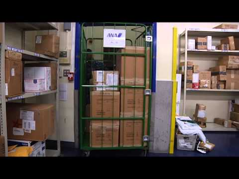 Postal Workers Deliver Holiday Items To CFAS