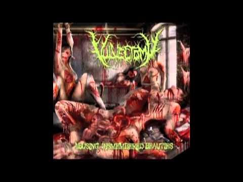 Vulvectomy - Abusing Dismembered Beauties (2013) Full Album