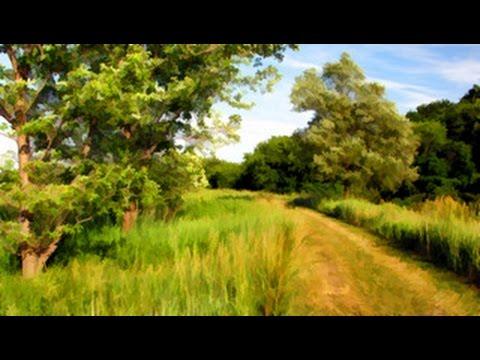Wilmot Township Summer Postcard, Waterloo Region Canada