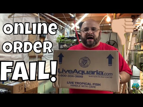 DISASTER ONLINE FISH ORDER! Live Fish Unboxing FAIL!