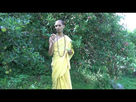 'Gold,Mercury,Alchemy & Raseshwari Sadhana Deeksha' 'Swran,parad,Rasayan' 'Vidhanam