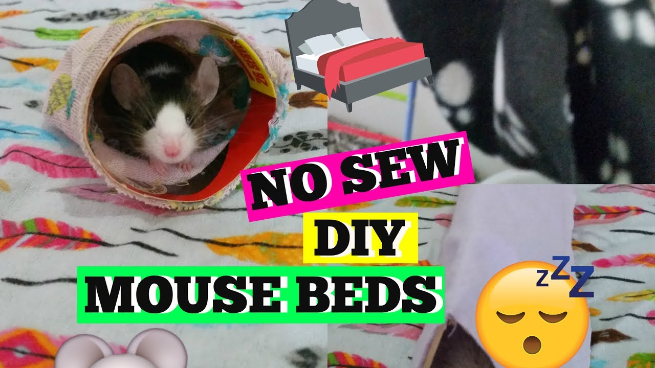 DIY NO SEW MOUSE HAMMOCK, TENT & BED