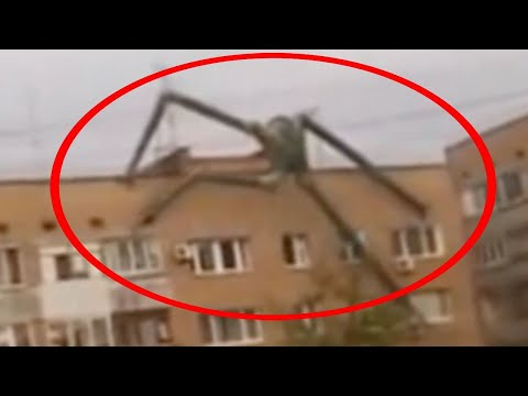 5 Scariest Unknown Creatures Caught On Camera & Spotted In Real Life