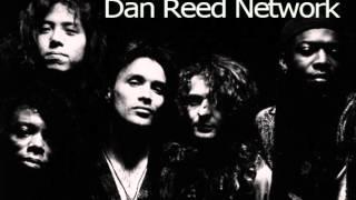 Dan Reed Network - Tamin