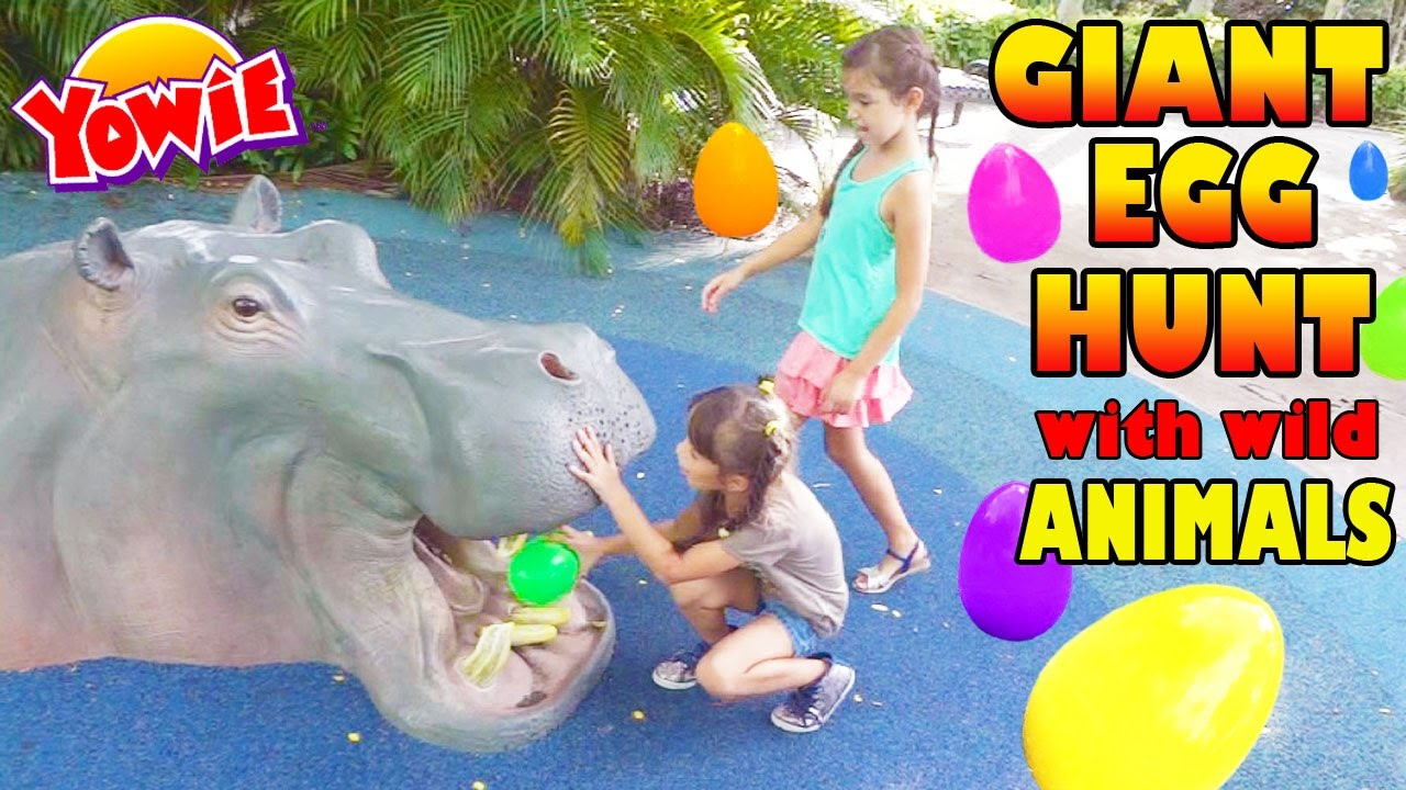 GIANT SURPRISE EGG HUNT with Wild Animals, Yowie Surprises Hidden Surprise Toys All American Edition