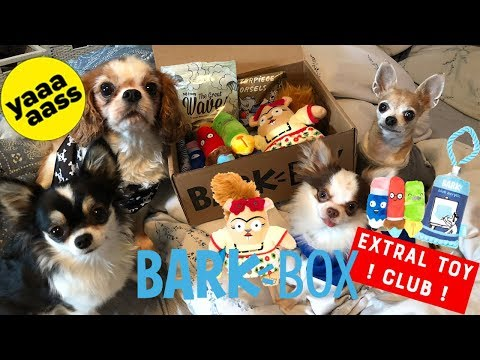 BarkBox March 2018 *Small Dogs*Chihuahua* unboxing EXTRA TOY CLUB( academy of the fine arts)
