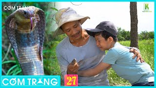 Người Cha Bắt Rắn Phần Cuối | Cơm Trắng 27 | Phim Ngắn Cảm Động Về Tình Cha | Ngụy Minh Khang