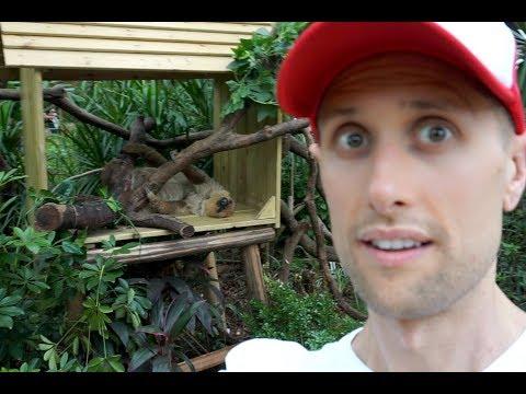 Chimelong Safari Park, Guangzhou, China Zoo