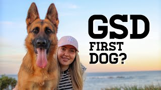 German Shepherd as a first time dog owner | GERMAN SHEPHERD AS A FIRST DOG | German Shepherd