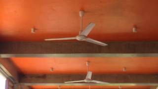 Asahi brand industrial/commercial ceiling fans in a restaurant
