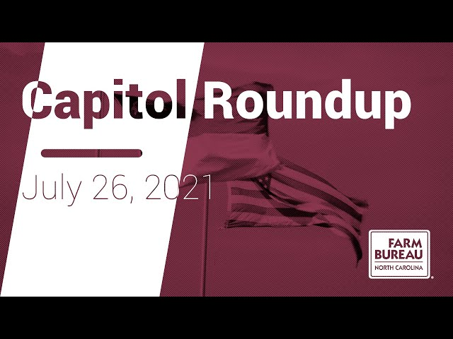 Capitol Roundup (July 26, 2021) - N.C. House works on budget, passes energy bill