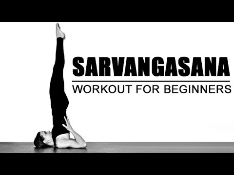 how to do sarvangasana  best yoga workout for beginners