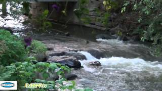 relaxation zen 10 eau qui coule hypnosis water larpv tv