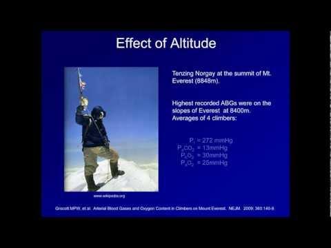The Effect of High Altitude on Oxygenation (ABG Interpretation - Supplemental Video)