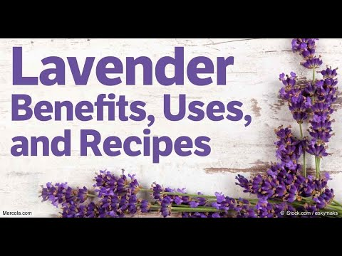 top-25-incredible-lavender-essential-oil-recipes,-uses-and-benefits