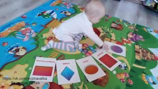 Занятие и игра для малышей. УЧИМ ГЕОМЕТРИЧЕСКИЕ ФИГУРЫ.