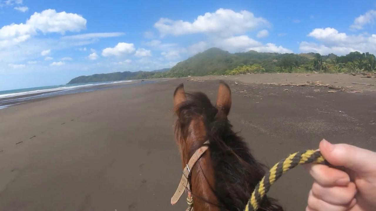 Panama City C Beaches Horseback Riding