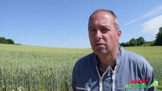 Innov'Action 2017 Bretagne - Autonomie et durabilité pour transmettre un élevage de porcs