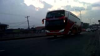 Bus Halmahera Scania Full Dim