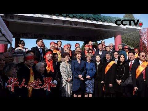 """《华人世界》华人社团牵头修缮""""安魂亭""""缅怀先辈 华裔议员呼吁当地政府支持 20190702   CCTV中文国际"""