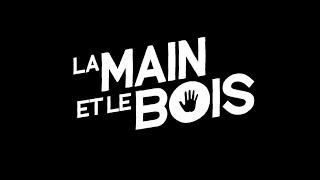 LA MAIN ET LE BOIS 4K