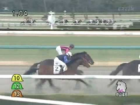 The biggest horse racing accident in Japan 2010 Jan. 11