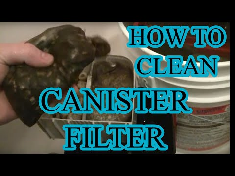 How to Clean a Canister Filter and Planted Tank