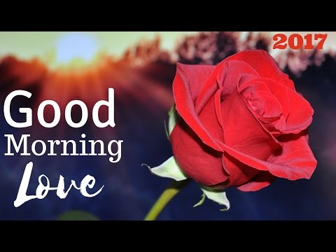 Good Morning My Love | Morning Quotes With Pictures of Flowers for Husband or Wife