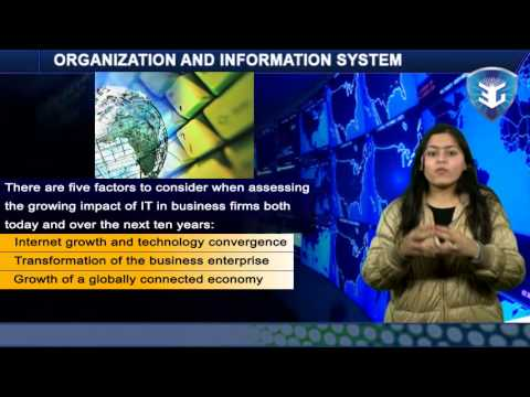 ORGANIZATION AND INFORMATION SYSTEMS