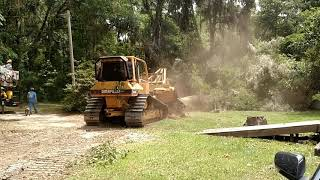 LAND CLEARING FLORIDA STYLE WITH D5 DOZER AND TREE SPEAR