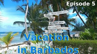 Vacation in Barbados - Episode 5