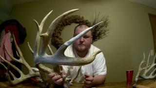 Rebuilding broken antlers