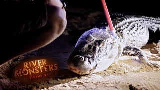 Jeremy Catches An 11 Foot Caiman!! | SPECIAL EPISODE | River Monsters