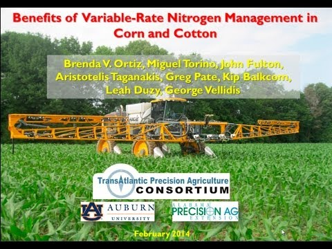Benefits of Variable-Rate Nitrogen Management in Corn and Cotton