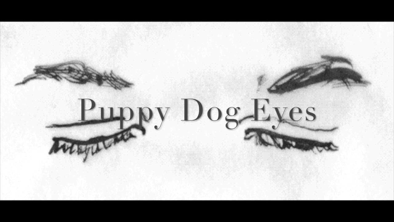 puppy-dog-eyes-ida-laurberg-ida-laurberg