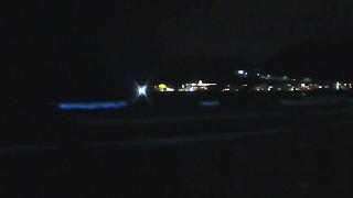 放射能だと青白い発光はセシウムだっけ、ルパン三世みたいなマンガで見たことあったなぁ。 これは発光バクテリアとかいう菌みたいなやつが海...