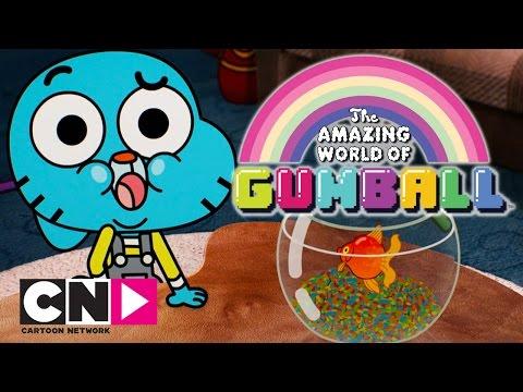 The Amazing World Of Gumball | No More Fish | Cartoon Network