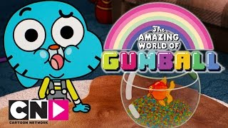 The Amazing World of Gumball | No More Fish | Cartoon Network