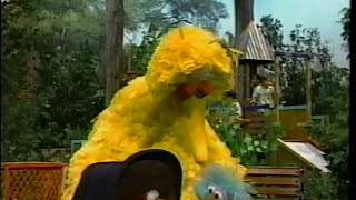 Sesame Street - Big Bird, Rosita and Elmo Play Family