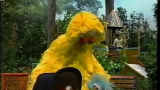 Sesame Street - Big Bird, Rosita and Elmo Play Family
