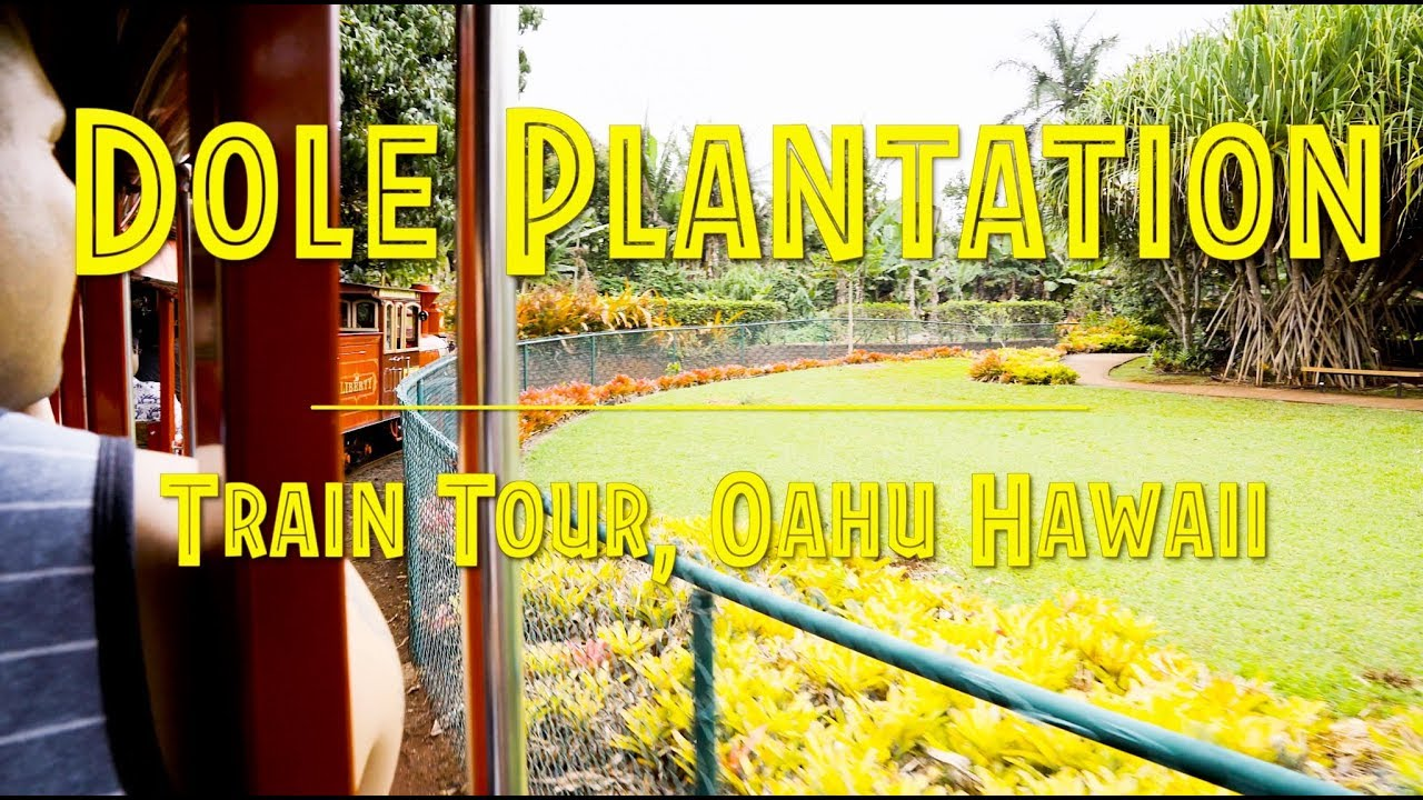 Dole Plantation Pineapple Express Train Tour Oahu Hawaii 4k Youtube