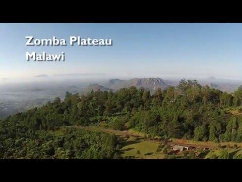 Zooming around the Zomba Plateau