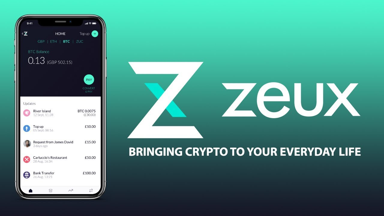 Image result for zeux ico
