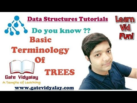 Tree Data Structure Basic Terms | Important
