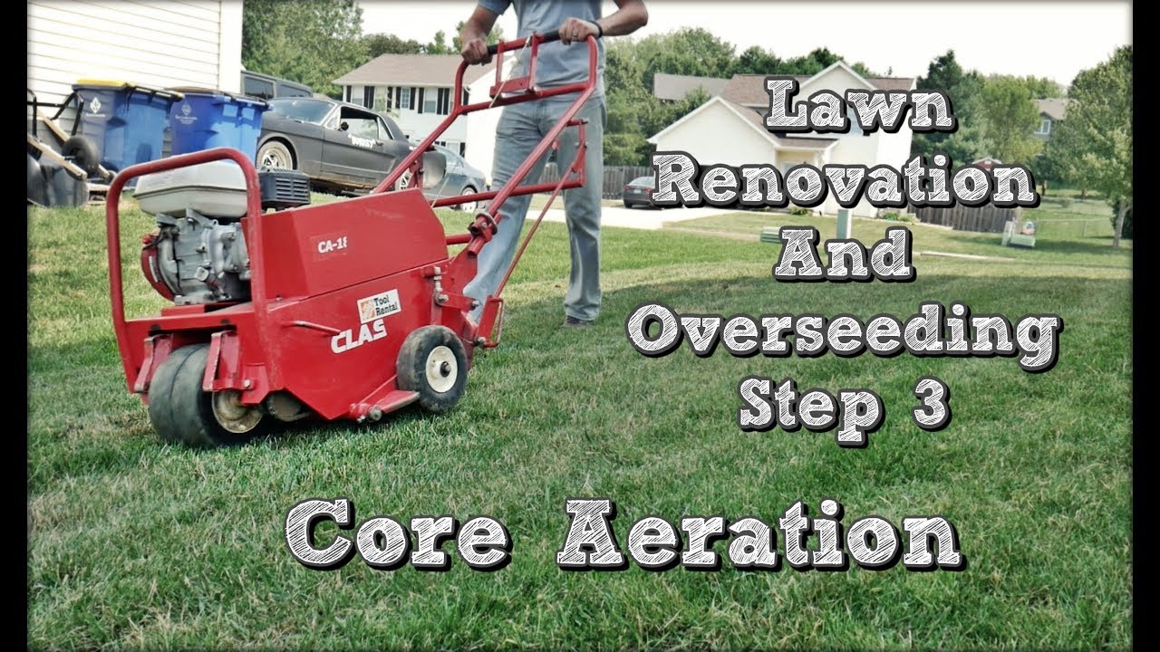 How To Core Aerate Your Lawn Fall Lawn Renovation And Overseeding Project Step 3