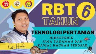 RBT Tahun 6 – Hidroponik (Jaga Tumbuhan, Kawal Perosak) #RBT #hidroponik #pdpr3.0