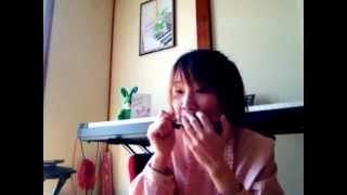 Hãy đến với con người Việt Nam tôi (harmonica)