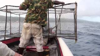 Fishing trip with local fishermen in Jamaica