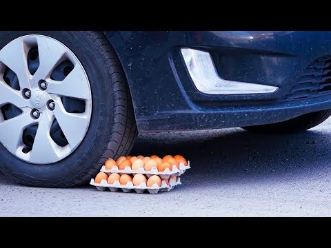 Experiment: CAR vs EGGS