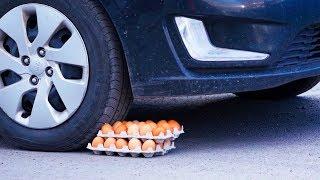 Experiment: CAR vs EGGS